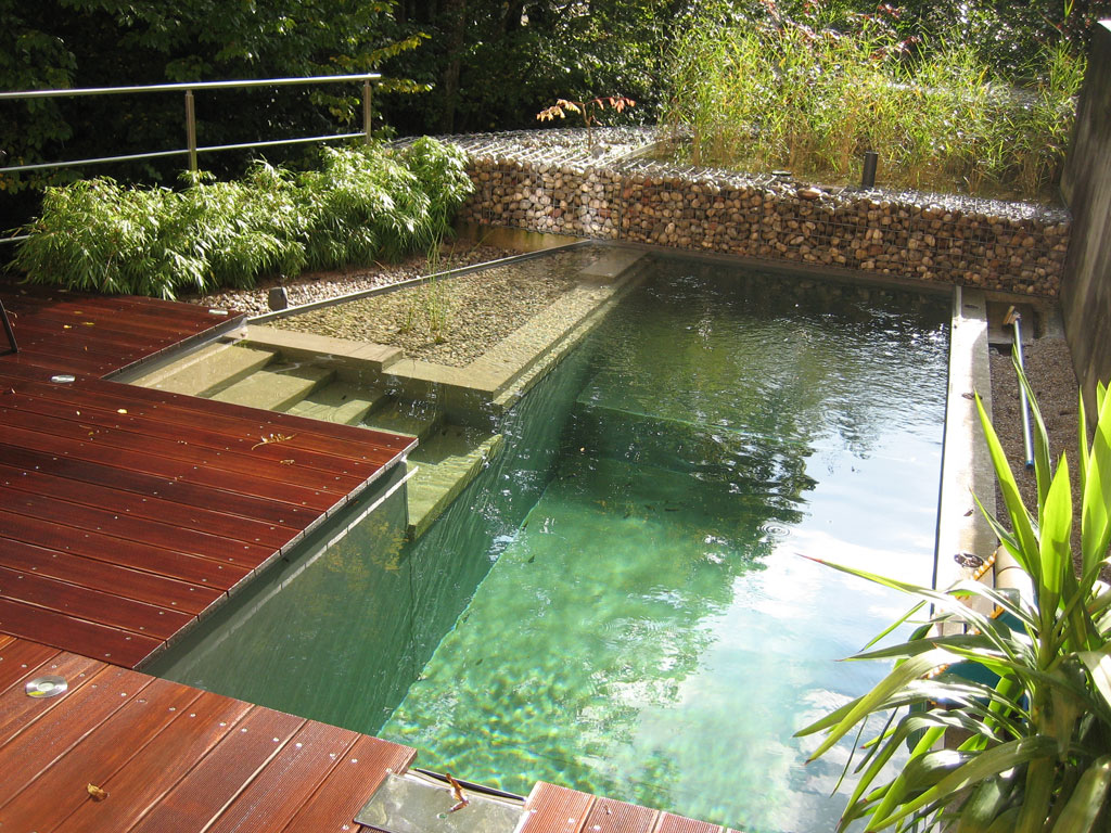Natural swimming pools uk images Natural swimming pool builders